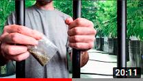 Наркотики в Германии и уголовное дело